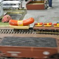 Train and Toy Show